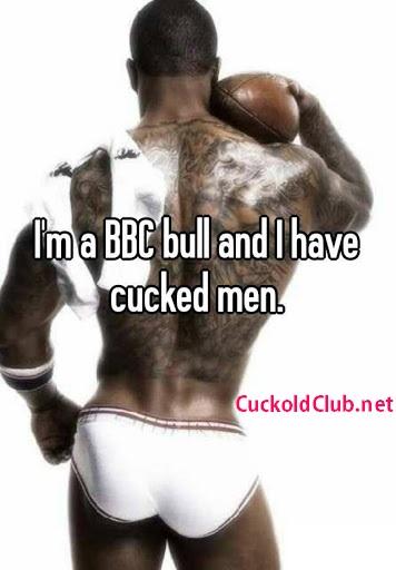 BBC Bull Definition