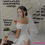 A Cuckold Wedding Night of A Beta Boy - Caption Story