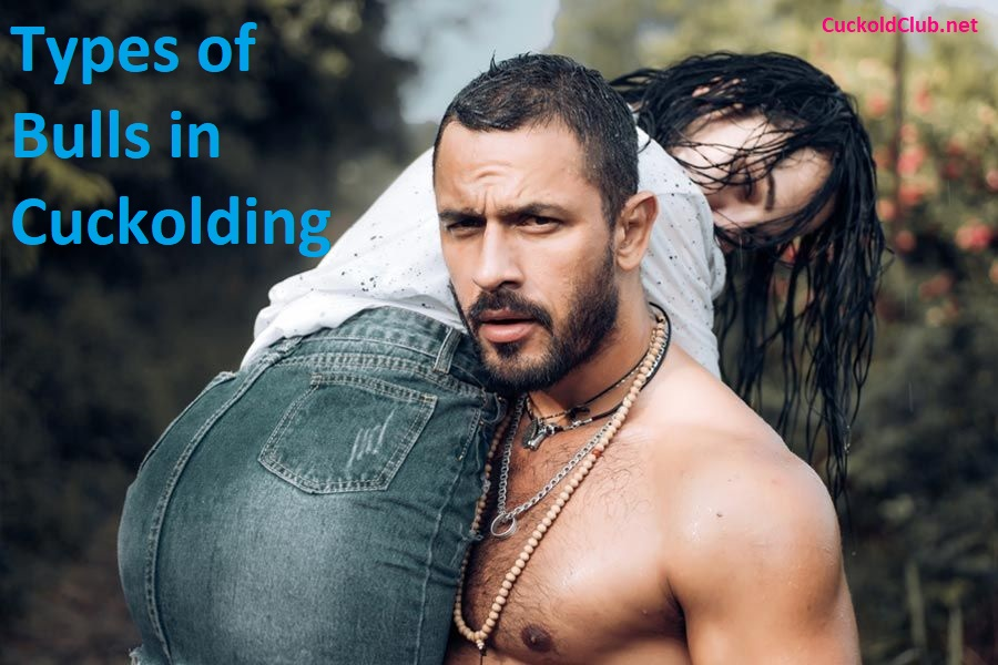 Types of Bulls in Cuckolding. What Type of Bull are you?